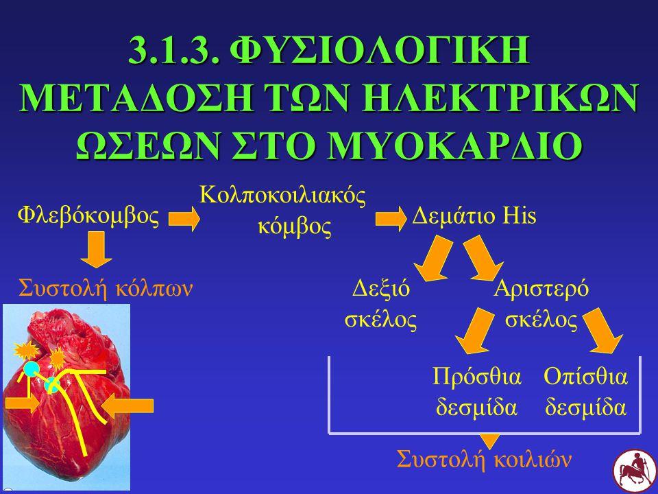 ΕΝΙΣΧΥΜΕΝΕΣ ΜΟΝΟΠΟΛΙΚΕΣ ΑΠΑΓΩΓΕΣ (aV R, aV L, aV F ) ΘΕΤΙΚΟΣ ΠΟΛΟΣ (+) ΑΡΝΗΤΙΚΟΣ ΠΟΛΟΣ (-) aV R Δεξί πρόσθιο άκροΤο δυναμικό κέντρο της καρδιάς όπως καταγράφεται από το μέσο όρο των δυναμικών στα υπόλοιπα ηλεκτρόδια aV L Αριστερό πρόσθιο άκρο aV F Αριστερό οπίσθιο άκρο