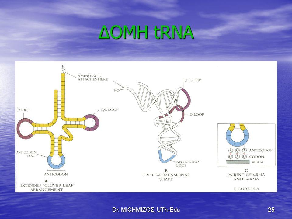 Dr. ΜΙCHΜΙΖΟΣ, UTh-Edu25 ΔΟΜΗ tRNA
