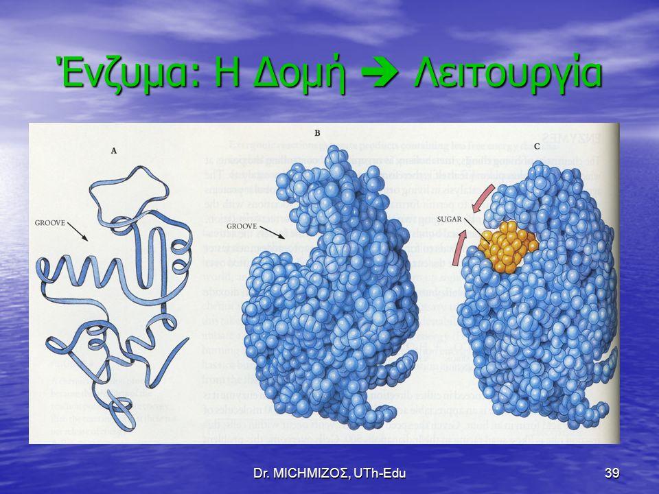 Dr. ΜΙCHΜΙΖΟΣ, UTh-Edu39 Ένζυμα: Η Δομή  Λειτουργία