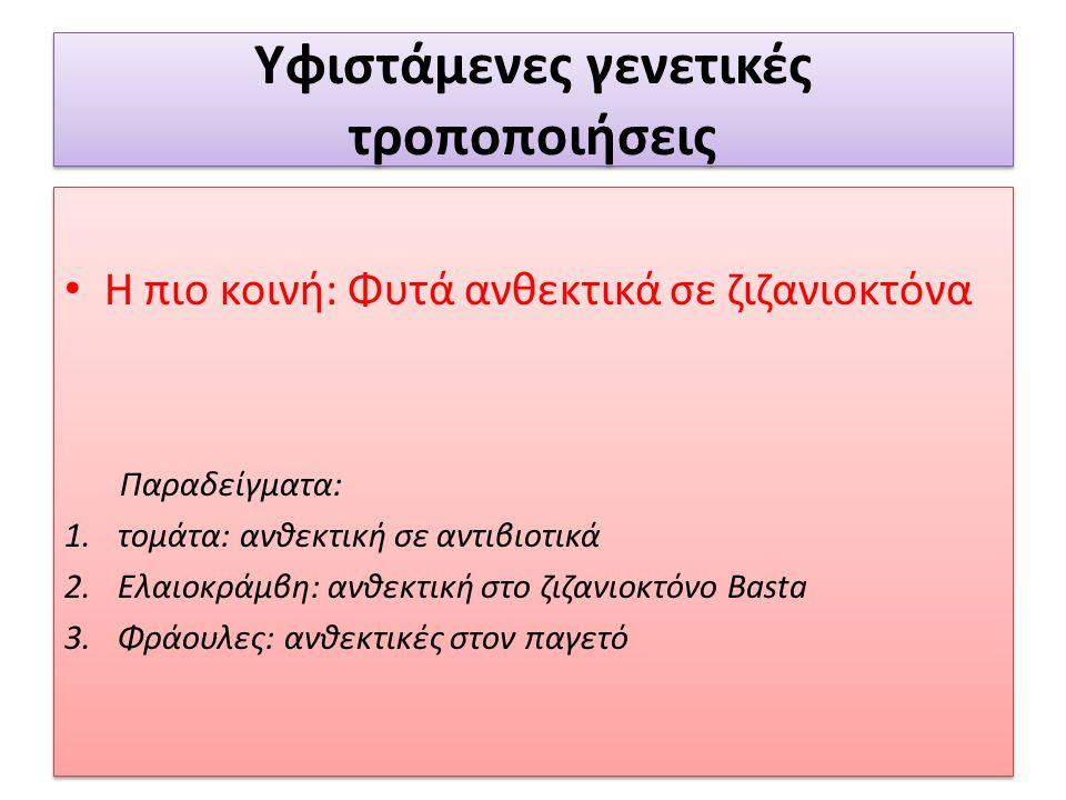 Υφιστάμενες γενετικές τροποποιήσεις Η πιο κοινή: Φυτά ανθεκτικά σε ζιζανιοκτόνα Παραδείγματα: 1.τομάτα: ανθεκτική σε αντιβιοτικά 2.Ελαιοκράμβη: ανθεκτ