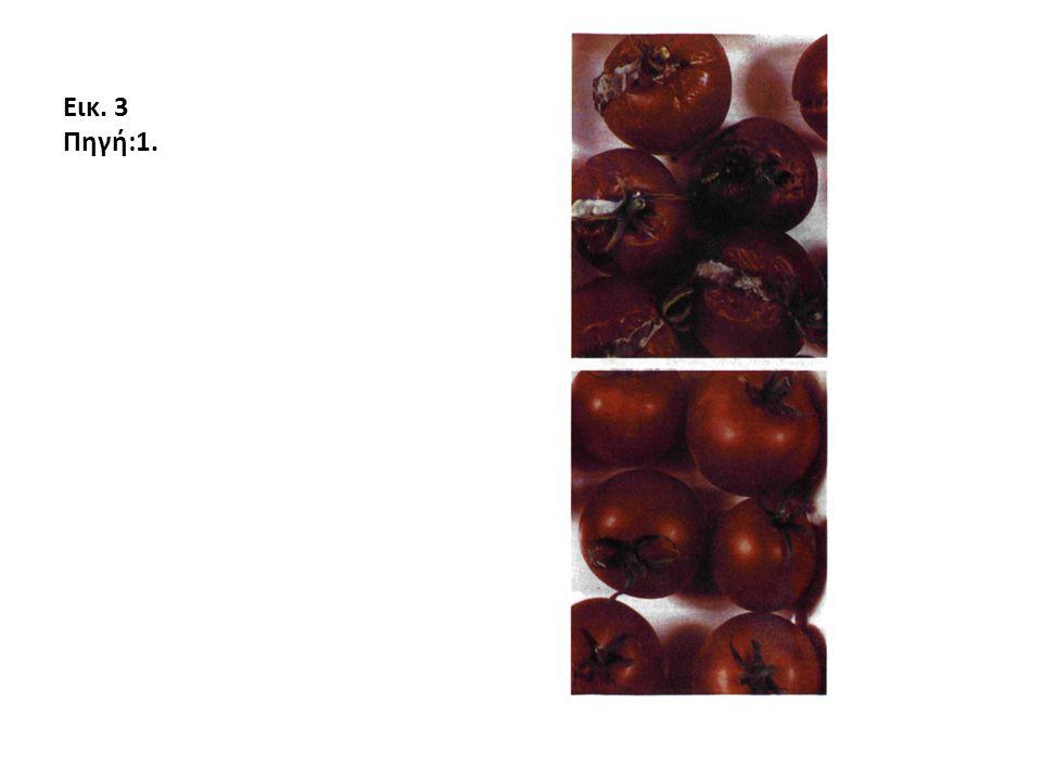 Εικ. 3 Πηγή:1.