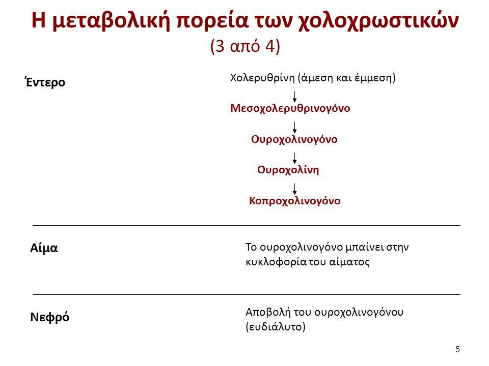 Έντερο Μεσοχολερυθρινογόνο Χολερυθρίνη (άμεση και έμμεση) Ουροχολινογόνο Ουροχολίνη Κοπροχολινογόνο Νεφρό Αποβολή του ουροχολινογόνου (ευδιάλυτο) Αίμα