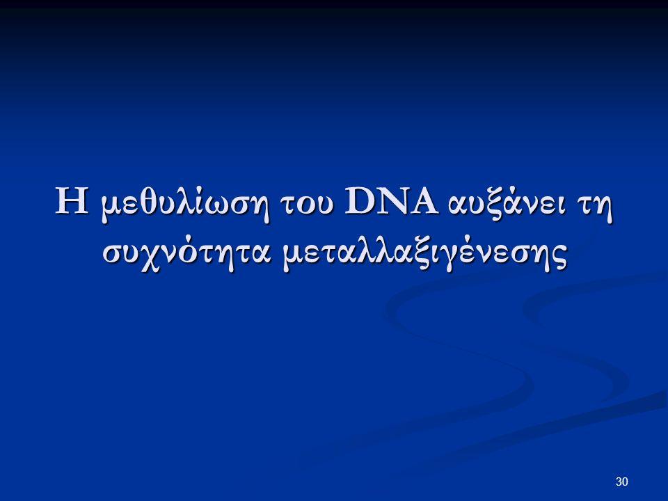 30 Η μεθυλίωση του DNA αυξάνει τη συχνότητα μεταλλαξιγένεσης