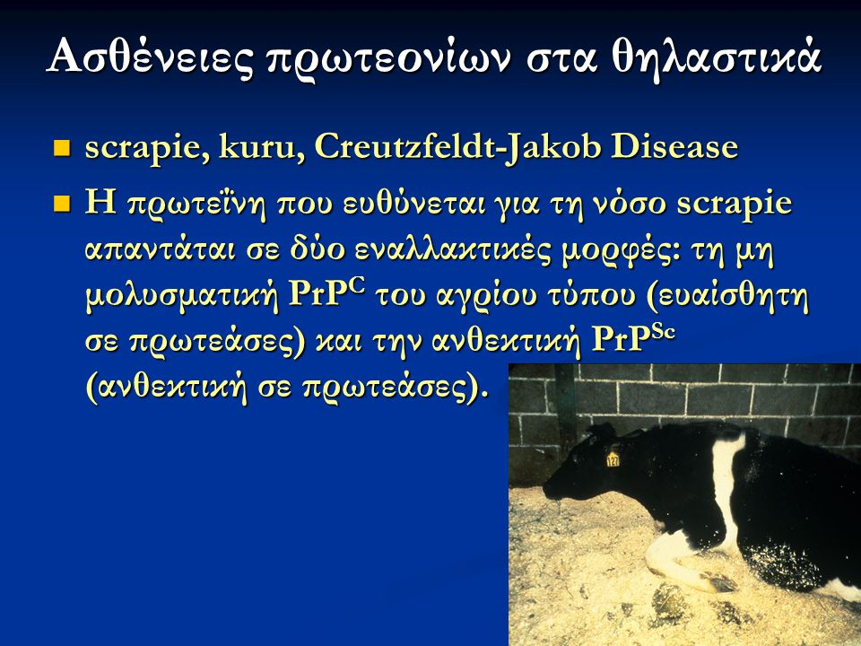 47 Ασθένειες πρωτεονίων στα θηλαστικά scrapie, kuru, Creutzfeldt-Jakob Disease scrapie, kuru, Creutzfeldt-Jakob Disease H πρωτεΐνη που ευθύνεται για τ