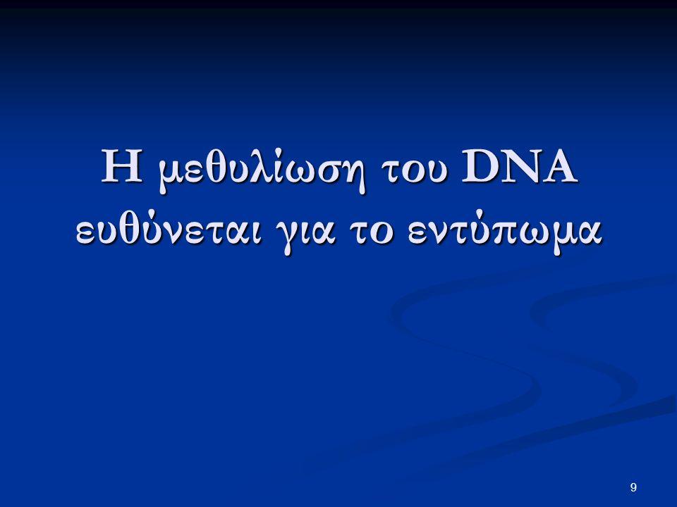 9 Η μεθυλίωση του DNA ευθύνεται για το εντύπωμα