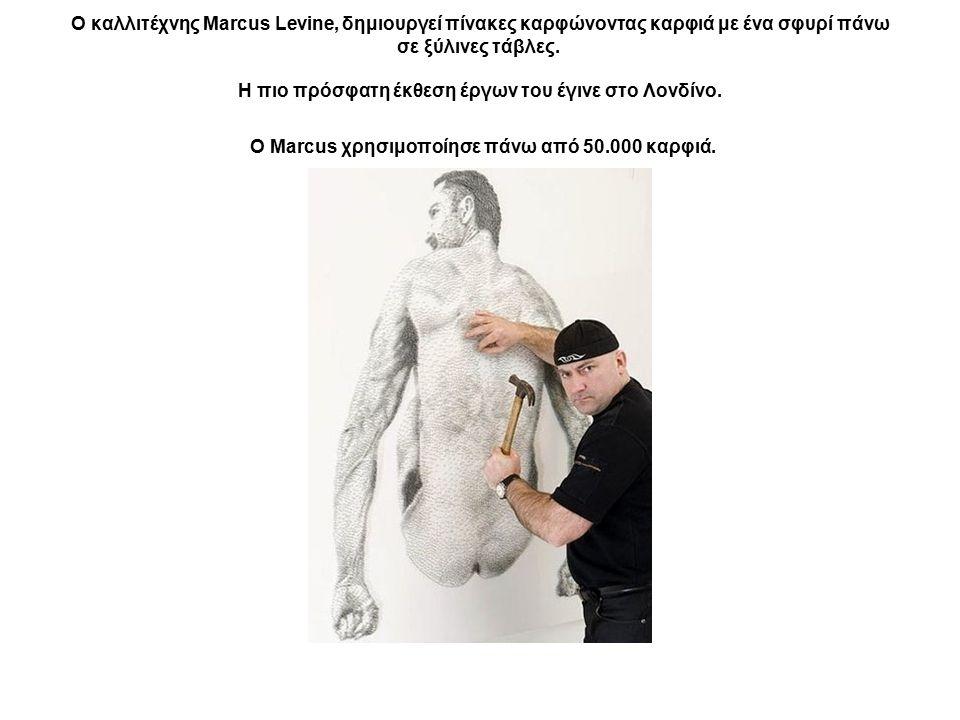 Ο καλλιτέχνης Marcus Levine, δημιουργεί πίνακες καρφώνοντας καρφιά με ένα σφυρί πάνω σε ξύλινες τάβλες. Η πιο πρόσφατη έκθεση έργων του έγινε στο Λονδ