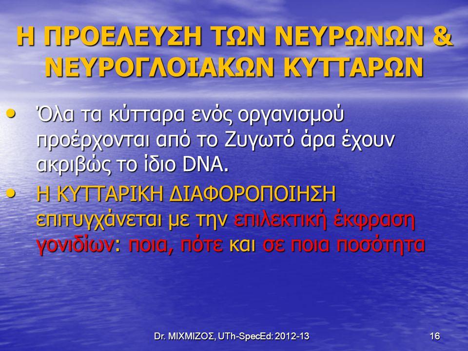 Dr. ΜΙΧΜΙΖΟΣ, UTh-SpecEd: 2012-13 16 Η ΠΡΟΕΛΕΥΣΗ ΤΩΝ ΝΕΥΡΩΝΩΝ & ΝΕΥΡΟΓΛΟΙΑΚΩΝ ΚΥΤΤΑΡΩΝ Όλα τα κύτταρα ενός οργανισμού προέρχονται από το Ζυγωτό άρα έχ