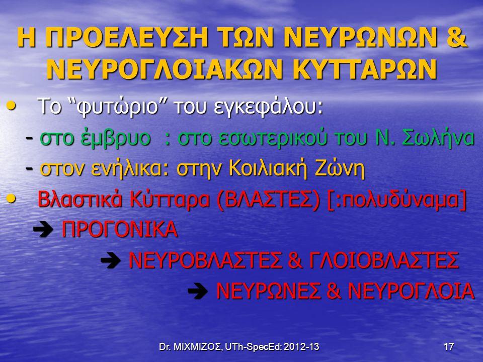 "Dr. ΜΙΧΜΙΖΟΣ, UTh-SpecEd: 2012-13 17 Η ΠΡΟΕΛΕΥΣΗ ΤΩΝ ΝΕΥΡΩΝΩΝ & ΝΕΥΡΟΓΛΟΙΑΚΩΝ ΚΥΤΤΑΡΩΝ Το ""φυτώριο"" του εγκεφάλου: Το ""φυτώριο"" του εγκεφάλου: - στο έ"