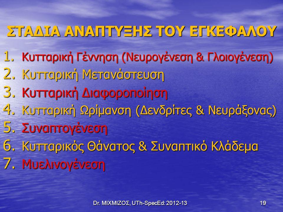 Dr. ΜΙΧΜΙΖΟΣ, UTh-SpecEd: 2012-13 19 ΣΤΑΔΙΑ ΑΝΑΠΤΥΞΗΣ ΤΟΥ ΕΓΚΕΦΑΛΟΥ 1. Κυτταρική Γέννηση (Νευρογένεση & Γλοιογένεση) 2. Κυτταρική Μετανάστευση 3. Κυττ