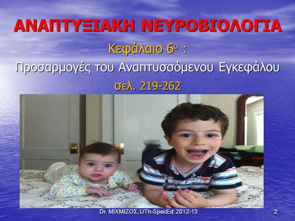 ΑΝΑΠΤΥΞΙΑΚΗ ΝΕΥΡΟΒΙΟΛΟΓΙΑ Κεφάλαιο 6 ο : Προσαρμογές του Αναπτυσσόμενου Εγκεφάλου σ ελ. 219-262 Dr. ΜΙΧΜΙΖΟΣ, UTh-SpecEd: 2012-13 2