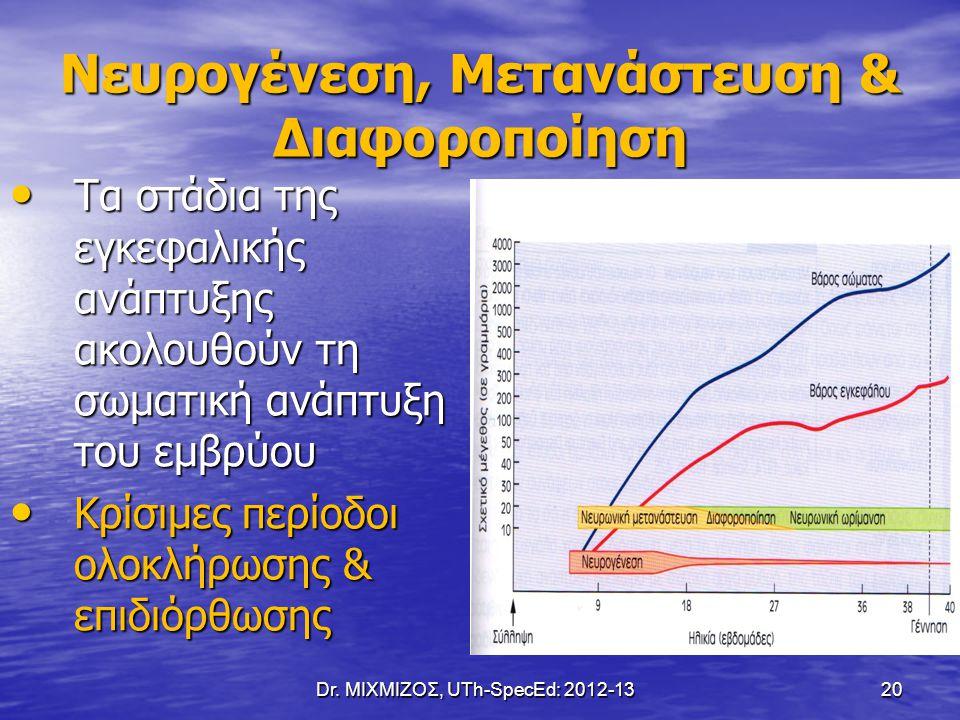 Dr. ΜΙΧΜΙΖΟΣ, UTh-SpecEd: 2012-13 20 Νευρογένεση, Μετανάστευση & Διαφοροποίηση Τα στάδια της εγκεφαλικής ανάπτυξης ακολουθούν τη σωματική ανάπτυξη του