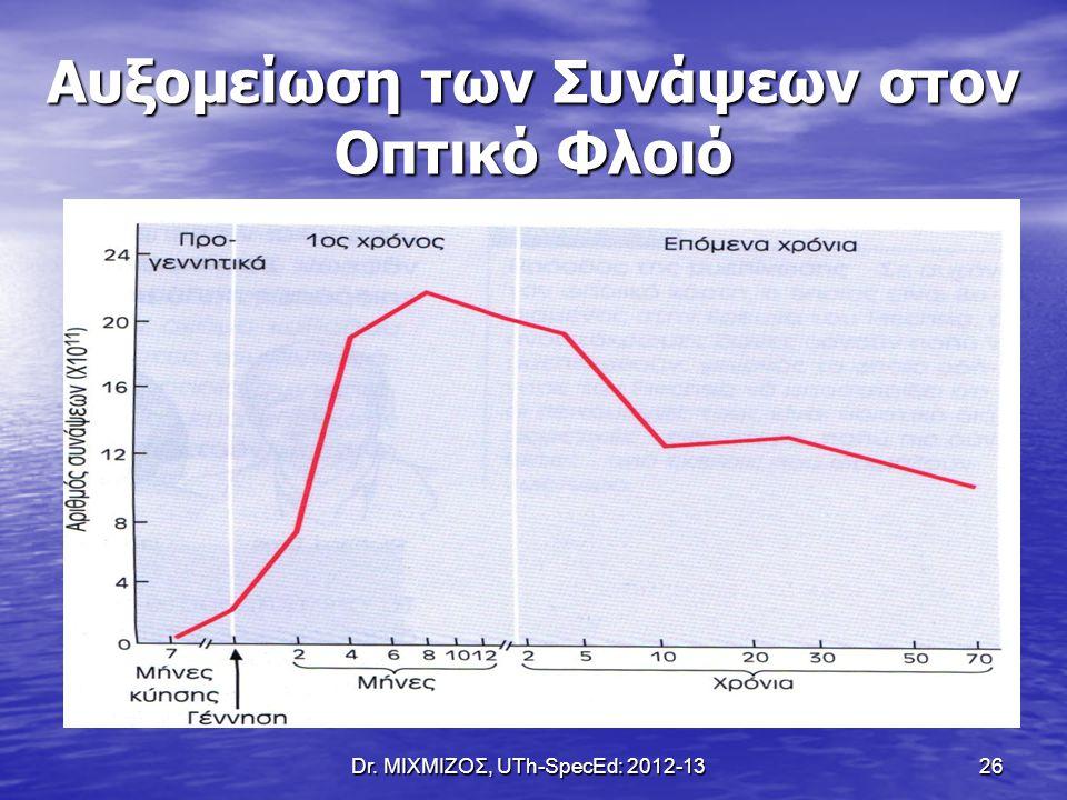Dr. ΜΙΧΜΙΖΟΣ, UTh-SpecEd: 2012-13 26 Αυξομείωση των Συνάψεων στον Οπτικό Φλοιό