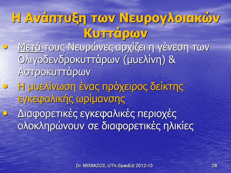 Dr. ΜΙΧΜΙΖΟΣ, UTh-SpecEd: 2012-13 28 Η Ανάπτυξη των Νευρογλοιακών Κυττάρων Μετά τους Νευρώνες αρχίζει η γένεση των Ολιγοδενδροκυττάρων (μυελίνη) & Αστ