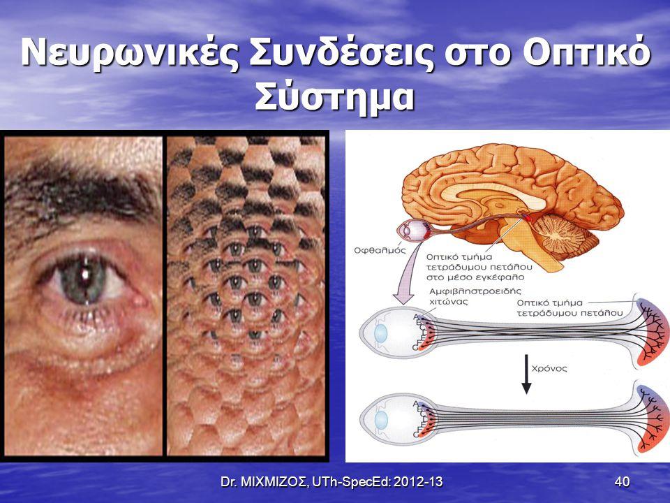 Dr. ΜΙΧΜΙΖΟΣ, UTh-SpecEd: 2012-13 40 Νευρωνικές Συνδέσεις στο Οπτικό Σύστημα