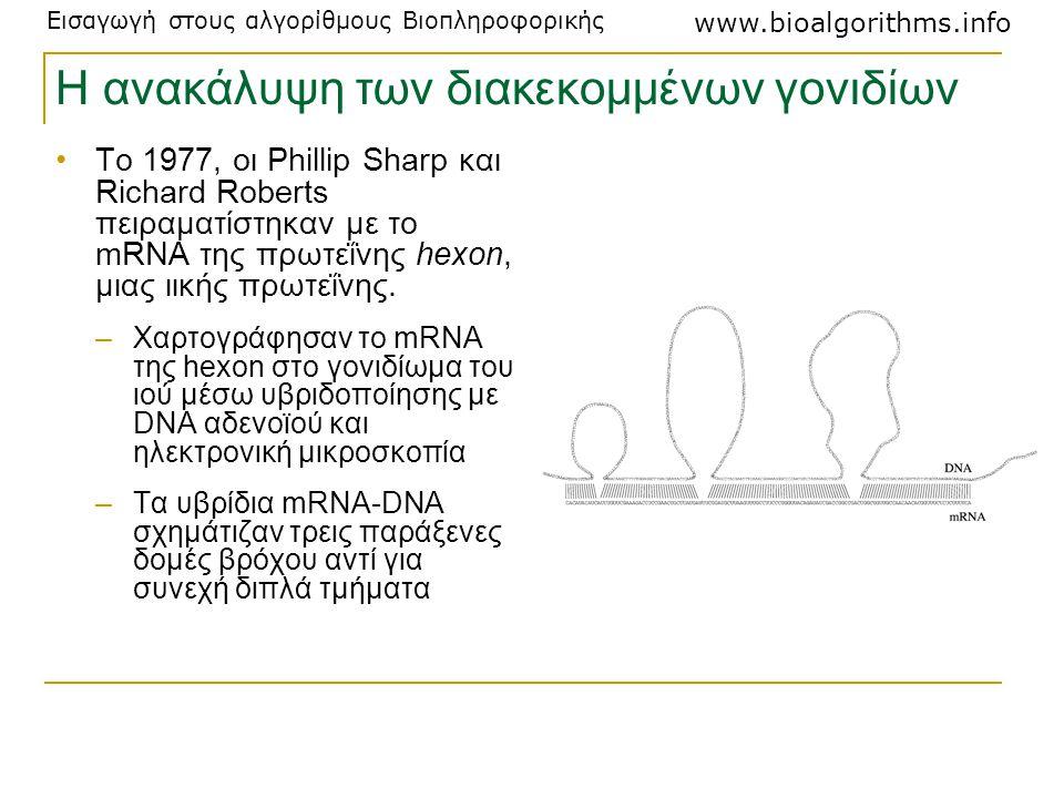 Εισαγωγή στους αλγορίθμους Βιοπληροφορικής www.bioalgorithms.info Η ανακάλυψη των διακεκομμένων γονιδίων Το 1977, οι Phillip Sharp και Richard Roberts