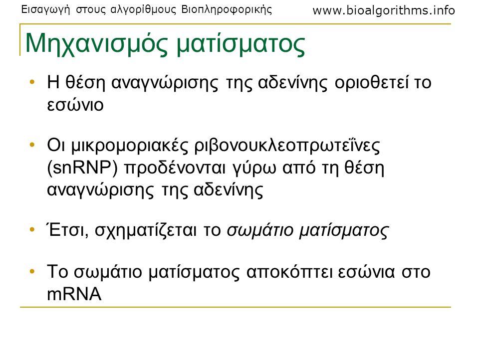 Εισαγωγή στους αλγορίθμους Βιοπληροφορικής www.bioalgorithms.info Μηχανισμός ματίσματος Η θέση αναγνώρισης της αδενίνης οριοθετεί το εσώνιο Οι μικρομο