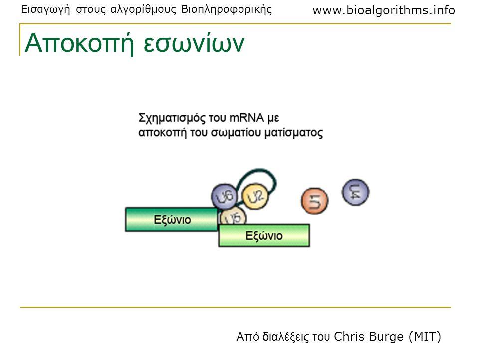 Εισαγωγή στους αλγορίθμους Βιοπληροφορικής www.bioalgorithms.info Αποκοπή εσωνίων Από διαλέξεις του Chris Burge (MIT)