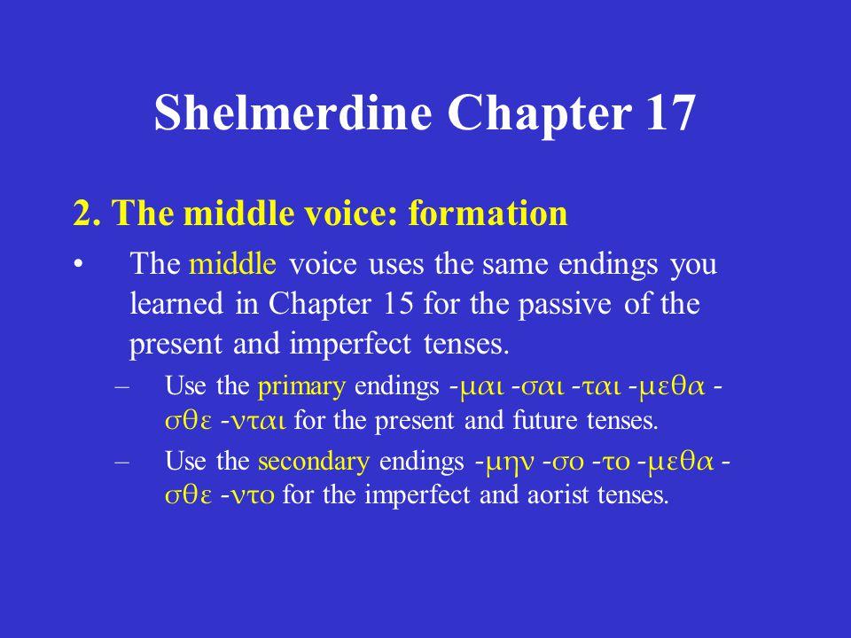 Shelmerdine Chapter 17 2.