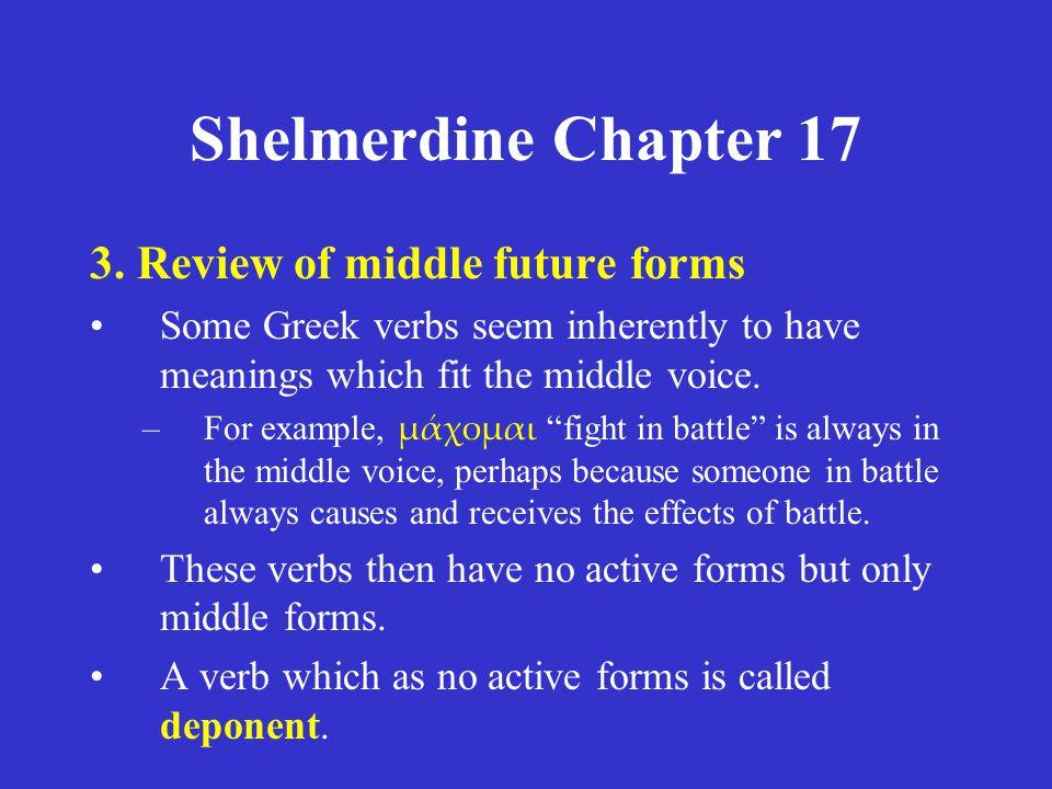 Shelmerdine Chapter 17 3.