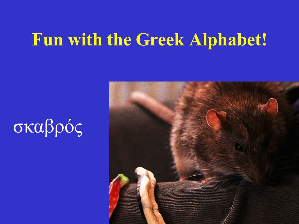 Fun with the Greek Alphabet! σκαβρός