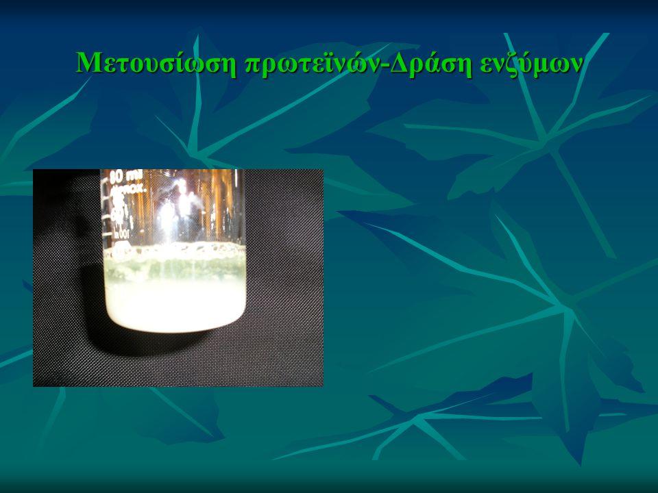 Μετουσίωση πρωτεϊνών-Δράση ενζύμων