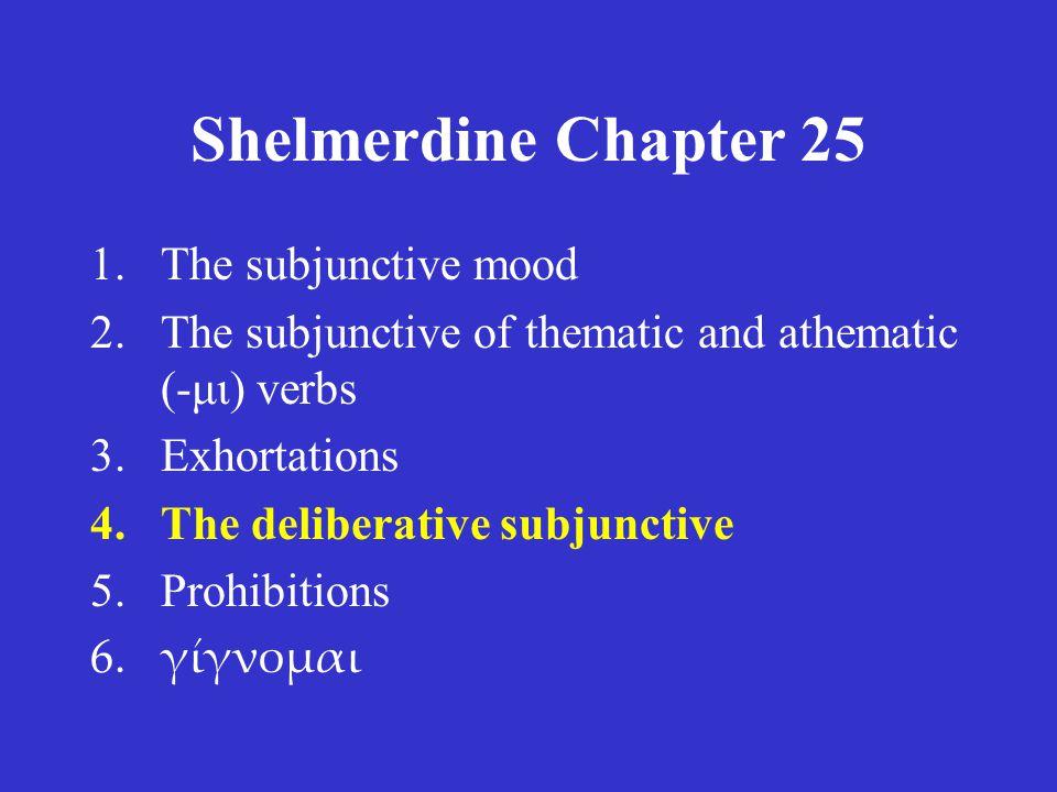Shelmerdine Chapter 25 3.