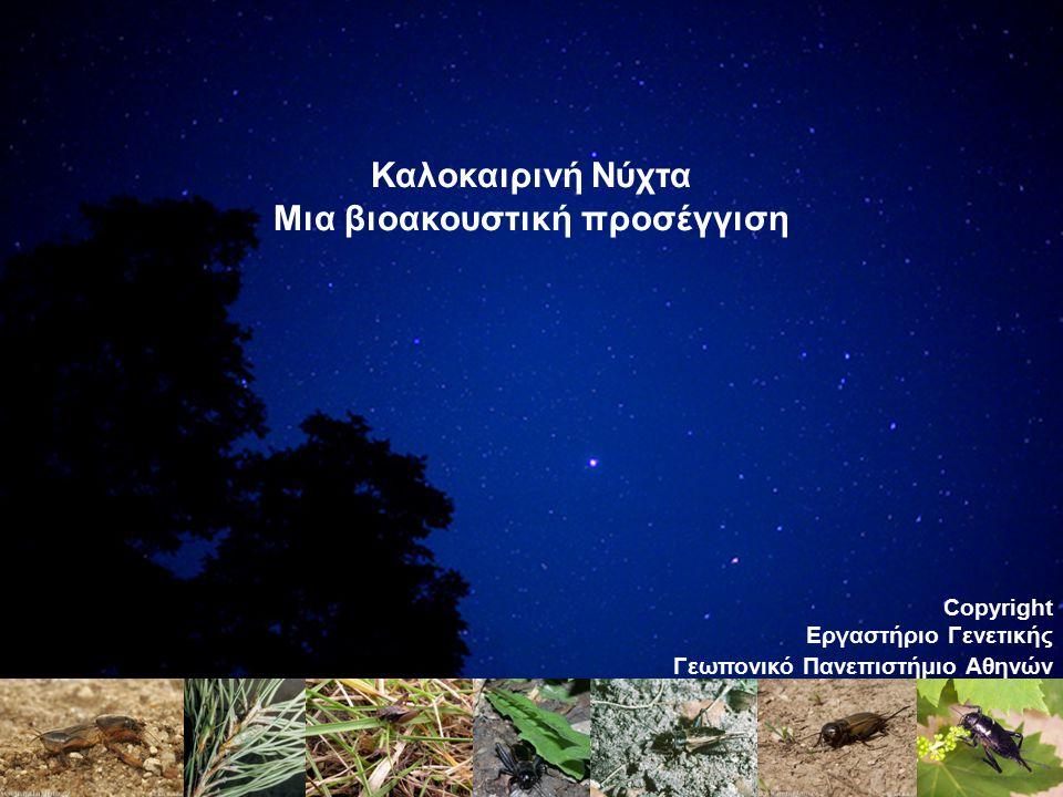 Καλοκαιρινή Νύχτα Μια βιοακουστική προσέγγιση Copyright Εργαστήριο Γενετικής Γεωπονικό Πανεπιστήμιο Αθηνών