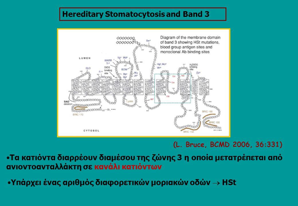 (L. Bruce, BCMD 2006, 36:331) Tα κατιόντα διαρρέουν διαμέσου της ζώνης 3 η οποία μετατρέπεται από ανιοντοανταλλάκτη σε κανάλι κατιόντων Ηereditary Sto