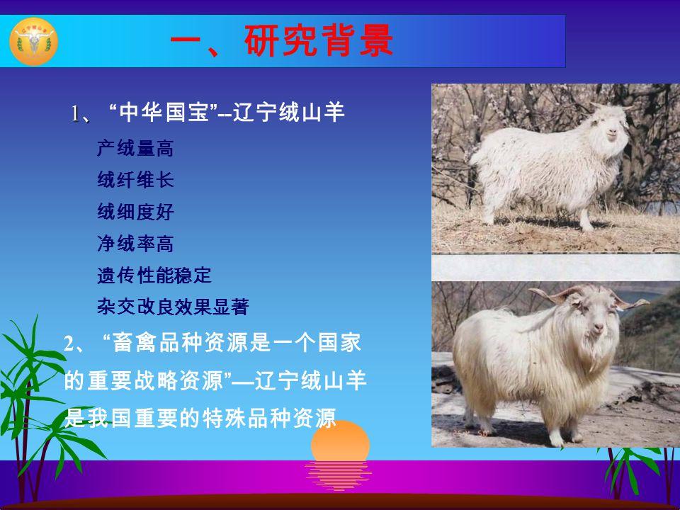 """一、研究背景 1 、 1 、 """" 中华国宝 """" -- 辽宁绒山羊 产绒量高 绒纤维长 绒细度好 净绒率高 遗传性能稳定 杂交改良效果显著 2 、 """" 畜禽品种资源是一个国家 的重要战略资源 """"— 辽宁绒山羊 是我国重要的特殊品种资源"""