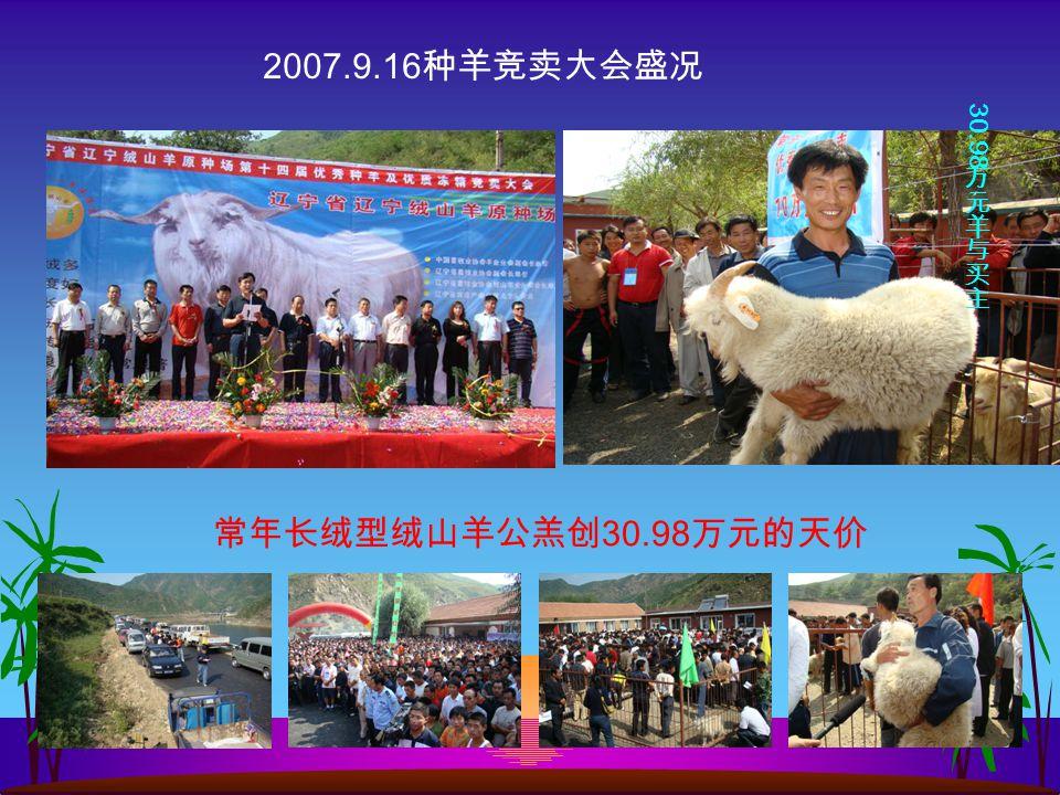常年长绒型绒山羊公羔创 30.98 万元的天价 2007.9.16 种羊竞卖大会盛况