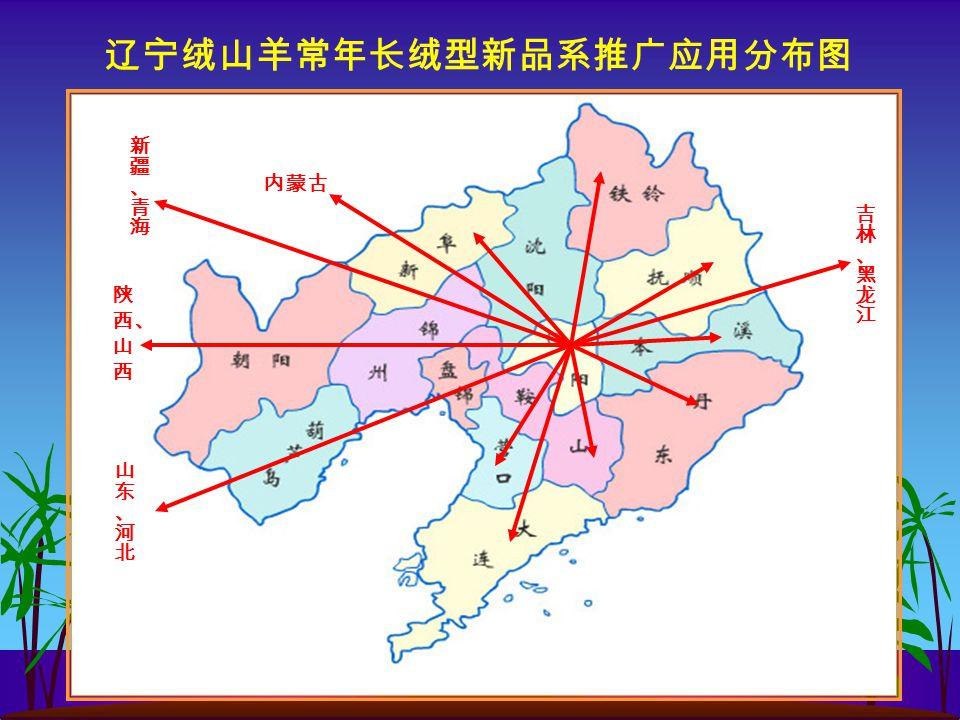 辽宁绒山羊常年长绒型新品系推广应用分布图 内蒙古 陕 西、 山 西