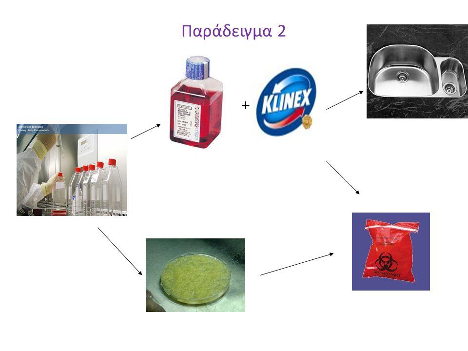 Παράδειγμα 2 +