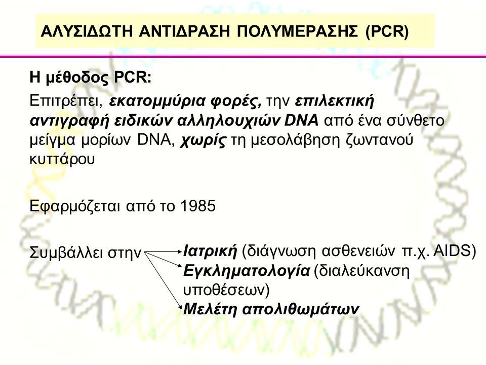 ΑΛΥΣΙΔΩΤΗ ΑΝΤΙΔΡΑΣΗ ΠΟΛΥΜΕΡΑΣΗΣ (PCR) Η μέθοδος PCR: Επιτρέπει, εκατομμύρια φορές, την επιλεκτική αντιγραφή ειδικών αλληλουχιών DNA από ένα σύνθετο με