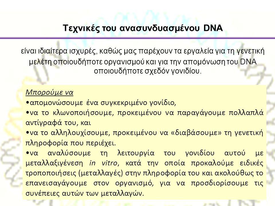 είναι ιδιαίτερα ισχυρές, καθώς µας παρέχουν τα εργαλεία για τη γενετική µελέτη οποιουδήποτε οργανισµού και για την αποµόνωση του DNA οποιουδήποτε σχεδ