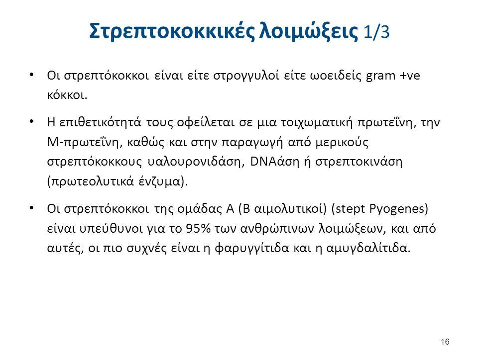 Στρεπτοκοκκικές λοιμώξεις 1/3 Οι στρεπτόκοκκοι είναι είτε στρογγυλοί είτε ωοειδείς gram +ve κόκκοι. Η επιθετικότητά τους οφείλεται σε μια τοιχωματική