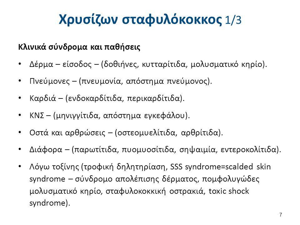 Χρυσίζων σταφυλόκοκκος 1/3 Κλινικά σύνδρομα και παθήσεις Δέρμα – είσοδος – (δοθιήνες, κυτταρίτιδα, μολυσματικό κηρίο). Πνεύμονες – (πνευμονία, απόστημ