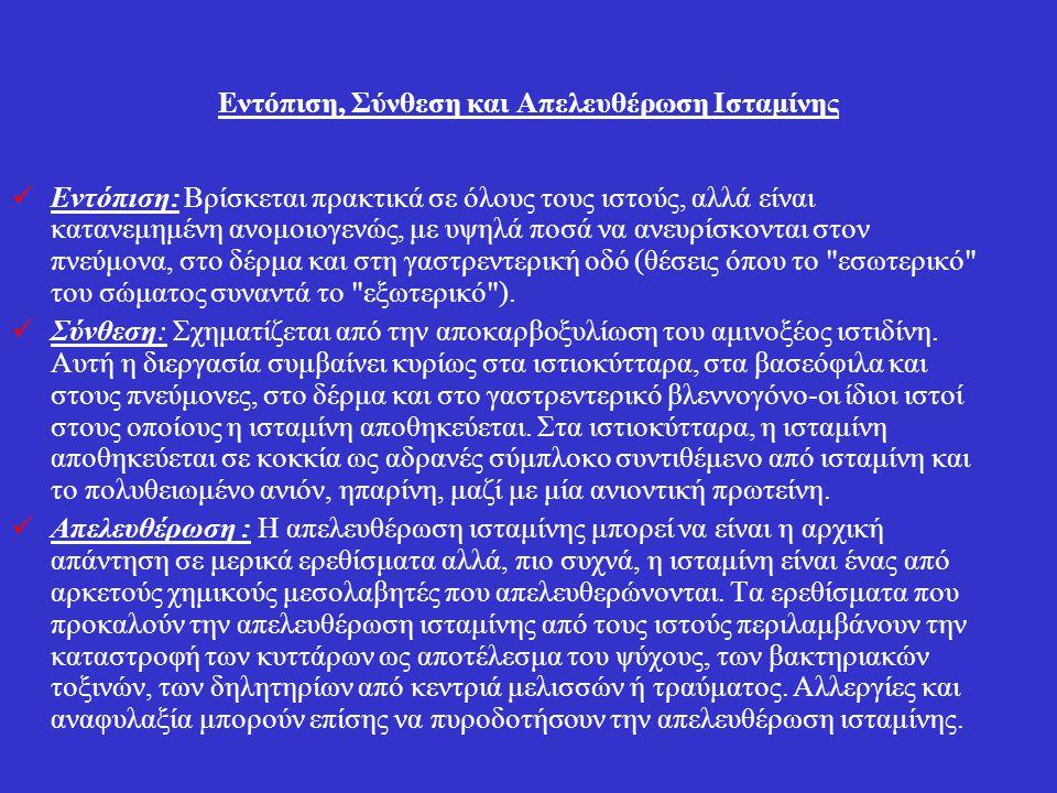 Εντόπιση, Σύνθεση και Απελευθέρωση Ισταμίνης Εντόπιση: Βρίσκεται πρακτικά σε όλους τους ιστούς, αλλά είναι κατανεμημένη ανομοιογενώς, με υψηλά ποσά να ανευρίσκονται στον πνεύμονα, στο δέρμα και στη γαστρεντερική οδό (θέσεις όπου το εσωτερικό του σώματος συναντά το εξωτερικό ).