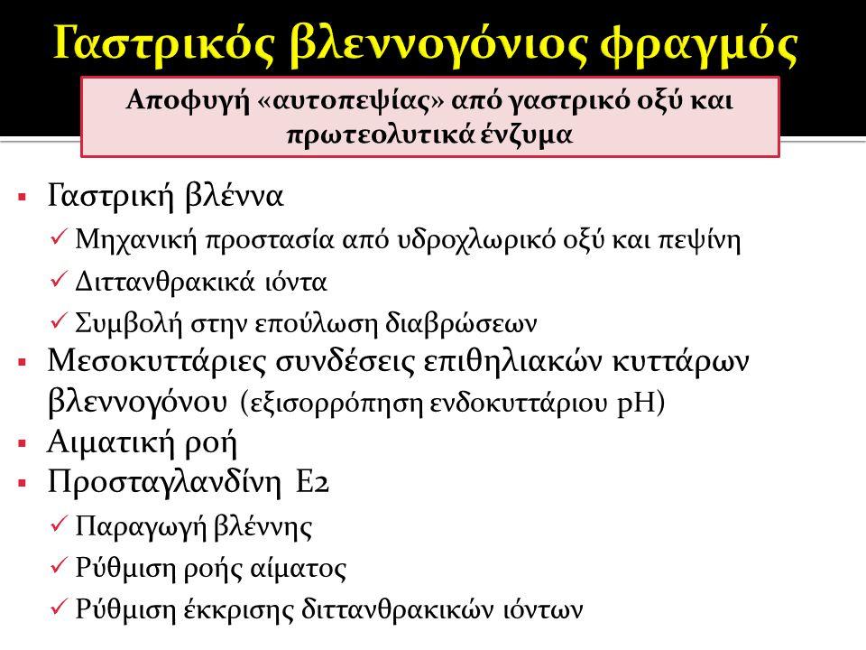 Αιτιοπαθογένεια  Αδιευκρίνιστα σημεία  Τροφική αλλεργία/δυσανεξία  Φαρμακευτική γαστρίτιδα (ΜΣΑΦ)  Γαστρίτιδα από ξένο σώμα  Παρασιτική γαστρίτιδα ( Ollulanus tricuspis, Physaloptera spp.