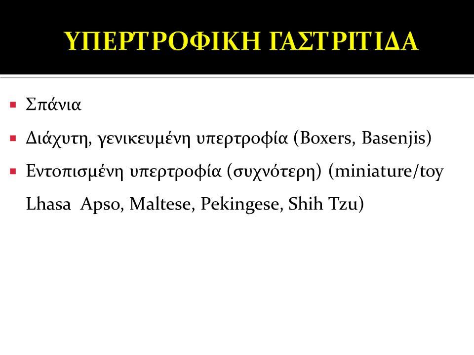  Σπάνια  Διάχυτη, γενικευμένη υπερτροφία (Boxers, Basenjis)  Εντοπισμένη υπερτροφία (συχνότερη) (miniature/toy Lhasa Apso, Maltese, Pekingese, Shih