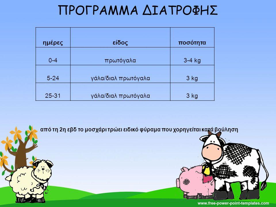 ΠΡΟΓΡΑΜΜΑ ΔΙΑΤΡΟΦΗΣ ημέρεςείδοςποσότητα 0-4πρωτόγαλα3-4 kg 5-24γάλα/διαλ πρωτόγαλα3 kg 25-31γάλα/διαλ πρωτόγαλα3 kg από τη 2η εβδ το μοσχάρι τρώει ειδ