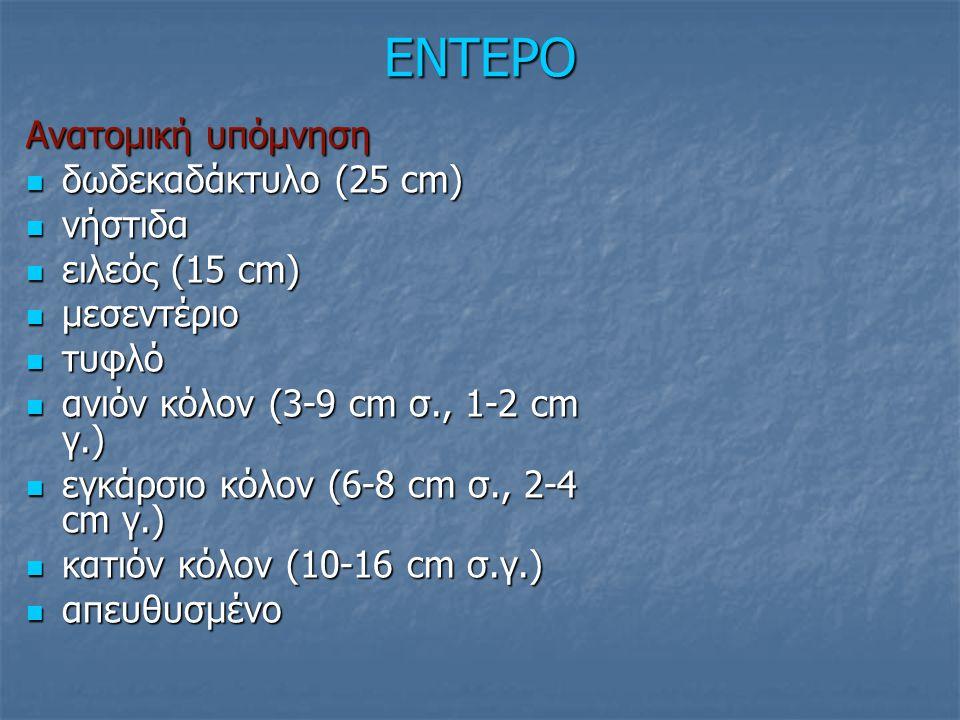 ΕΝΤΕΡΟ Ανατομική υπόμνηση δωδεκαδάκτυλο (25 cm) δωδεκαδάκτυλο (25 cm) νήστιδα νήστιδα ειλεός (15 cm) ειλεός (15 cm) μεσεντέριο μεσεντέριο τυφλό τυφλό ανιόν κόλον (3-9 cm σ., 1-2 cm γ.) ανιόν κόλον (3-9 cm σ., 1-2 cm γ.) εγκάρσιο κόλον (6-8 cm σ., 2-4 cm γ.) εγκάρσιο κόλον (6-8 cm σ., 2-4 cm γ.) κατιόν κόλον (10-16 cm σ.γ.) κατιόν κόλον (10-16 cm σ.γ.) απευθυσμένο απευθυσμένο