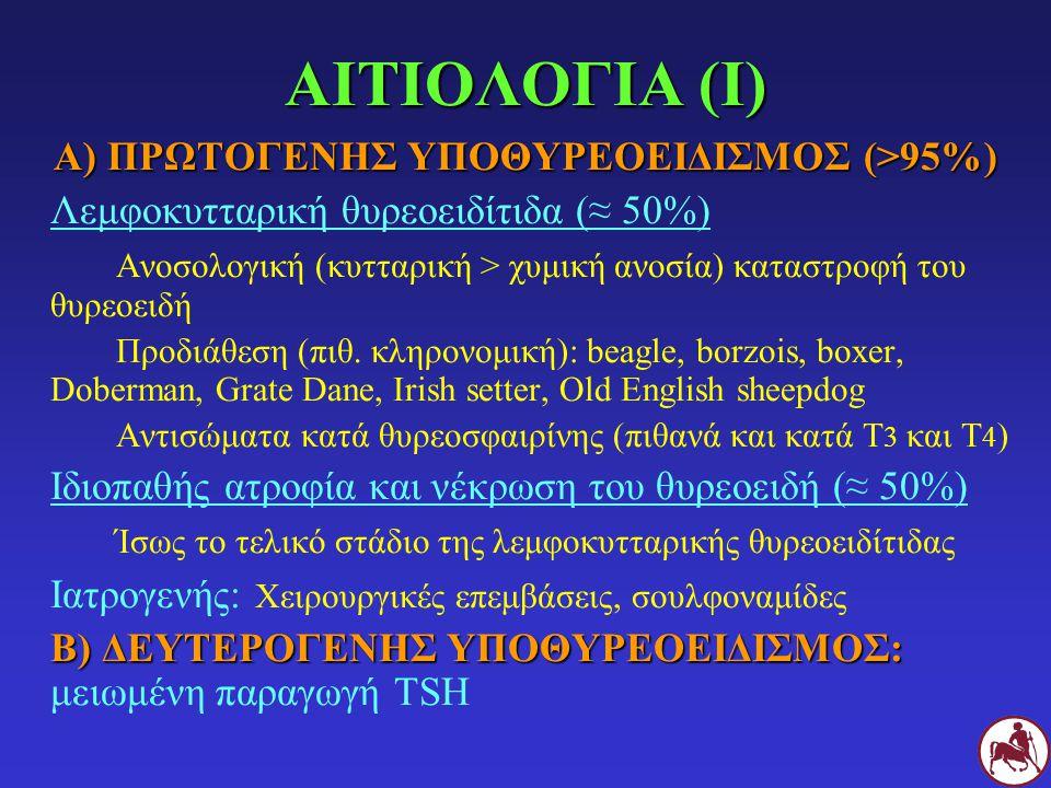 ΑΙΤΙΟΛΟΓΙΑ (Ι) Α) ΠΡΩΤΟΓΕΝΗΣ ΥΠΟΘΥΡΕΟΕΙΔΙΣΜΟΣ (>95%) Λεμφοκυτταρική θυρεοειδίτιδα (≈ 50%) Ανοσολογική (κυτταρική > χυμική ανοσία) καταστροφή του θυρεο