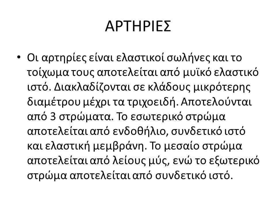 ΑΡΤΗΡΙΕΣ