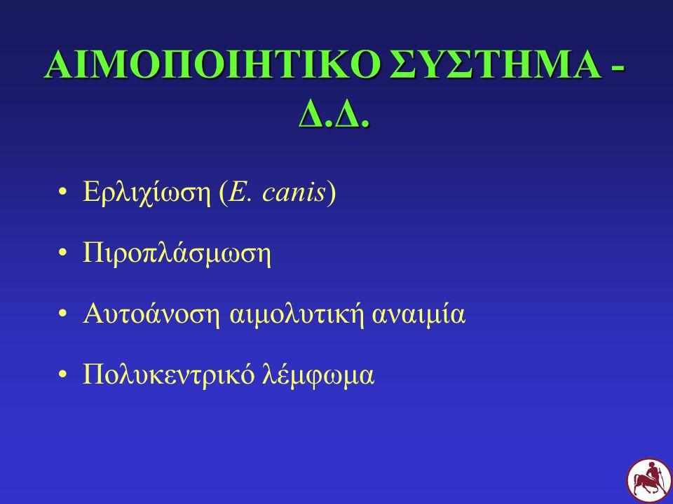 ΑΙΜΟΠΟΙΗΤΙΚΟ ΣΥΣΤΗΜΑ - Δ.Δ. Ερλιχίωση (E. canis) Πιροπλάσμωση Αυτοάνοση αιμολυτική αναιμία Πολυκεντρικό λέμφωμα