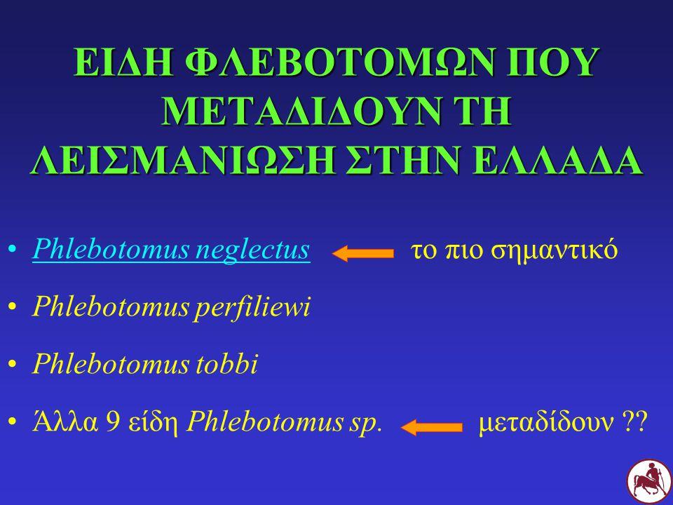 ΕΙΔΗ ΦΛΕΒΟΤΟΜΩΝ ΠΟΥ ΜΕΤΑΔΙΔΟΥΝ ΤΗ ΛΕΙΣΜΑΝΙΩΣΗ ΣΤΗΝ ΕΛΛΑΔΑ Phlebotomus neglectusτο πιο σημαντικό Phlebotomus perfiliewi Phlebotomus tobbi Άλλα 9 είδη P