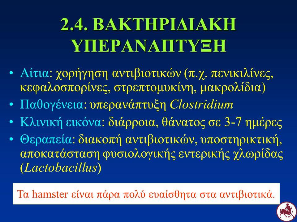 2.4. ΒΑΚΤΗΡΙΔΙΑΚΗ ΥΠΕΡΑΝΑΠΤΥΞΗ Αίτια: χορήγηση αντιβιοτικών (π.χ. πενικιλίνες, κεφαλοσπορίνες, στρεπτομυκίνη, μακρολίδια) Παθογένεια: υπερανάπτυξη Clo