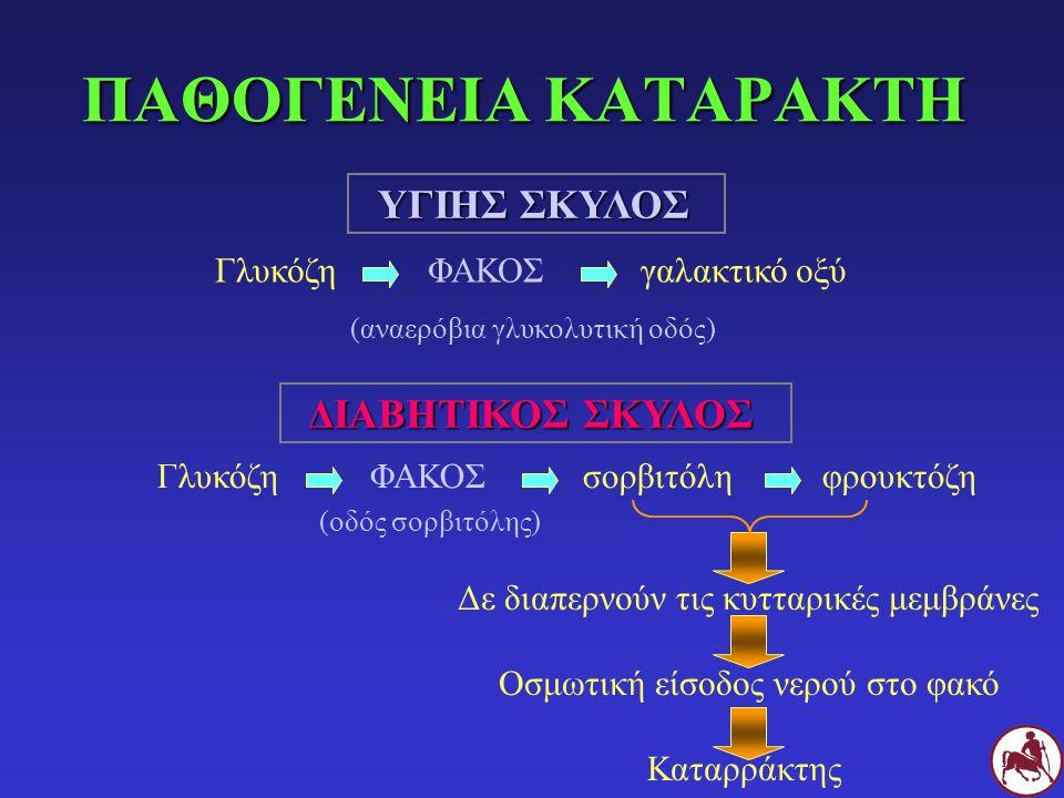 ΠΑΘΟΓΕΝΕΙΑ ΚΑΤΑΡΑΚΤΗ ΥΓΙΗΣ ΣΚΥΛΟΣ ΓλυκόζηΦΑΚΟΣγαλακτικό οξύ (αναερόβια γλυκολυτική οδός) ΔΙΑΒΗΤΙΚΟΣ ΣΚΥΛΟΣ ΓλυκόζηΦΑΚΟΣσορβιτόλη φρουκτόζη (οδός σορβι