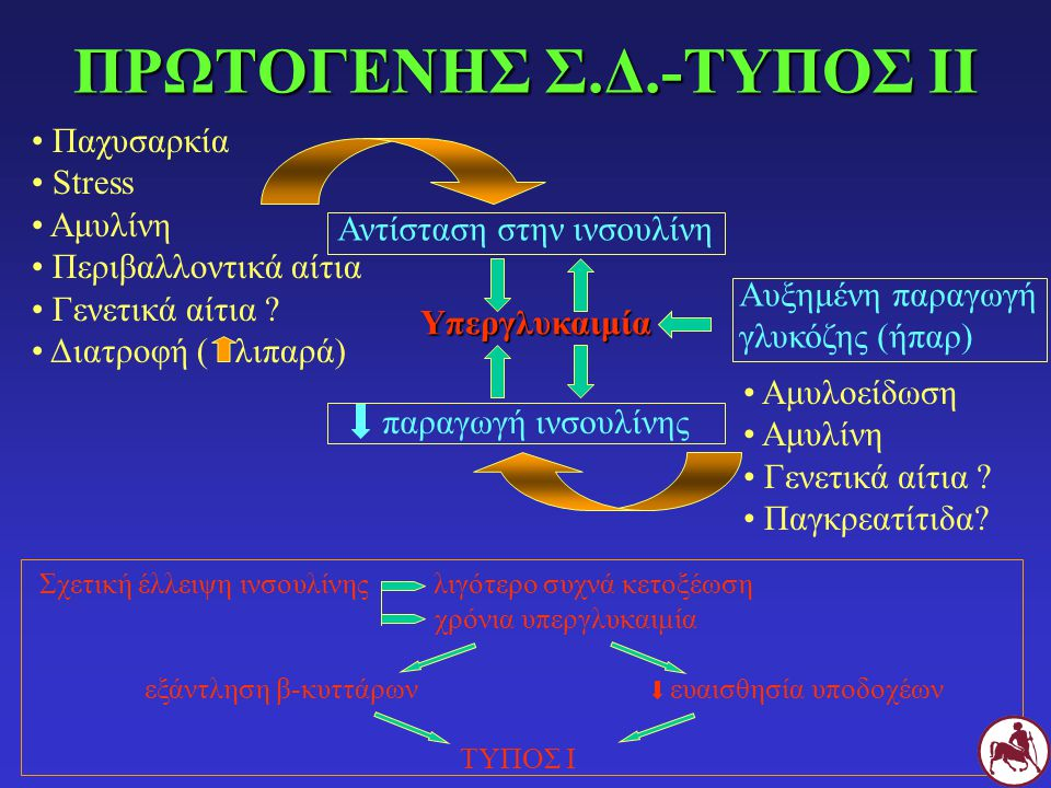 ΠΡΩΤΟΓΕΝΗΣ Σ.Δ.-ΤΥΠΟΣ ΙΙ Σχετική έλλειψη ινσουλίνης λιγότερο συχνά κετοξέωση χρόνια υπεργλυκαιμία εξάντληση β-κυττάρωνευαισθησία υποδοχέων ΤΥΠΟΣ Ι Αυξ