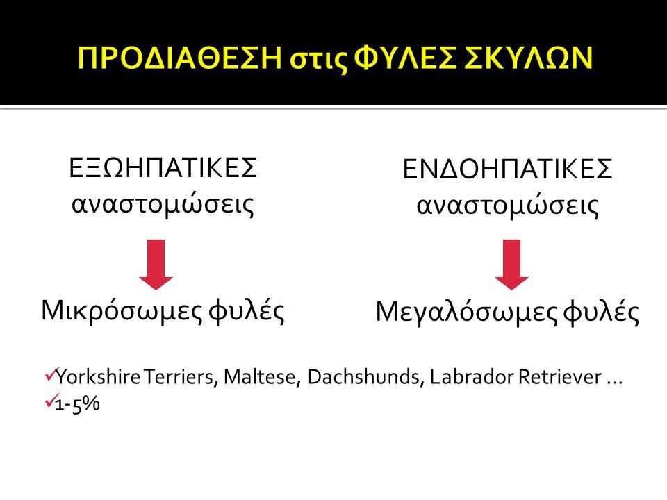 ΕΞΩΗΠΑΤΙΚΕΣ αναστομώσεις Μικρόσωμες φυλές ΕΝΔΟΗΠΑΤΙΚΕΣ αναστομώσεις Μεγαλόσωμες φυλές Yorkshire Terriers, Maltese, Dachshunds, Labrador Retriever … 1-