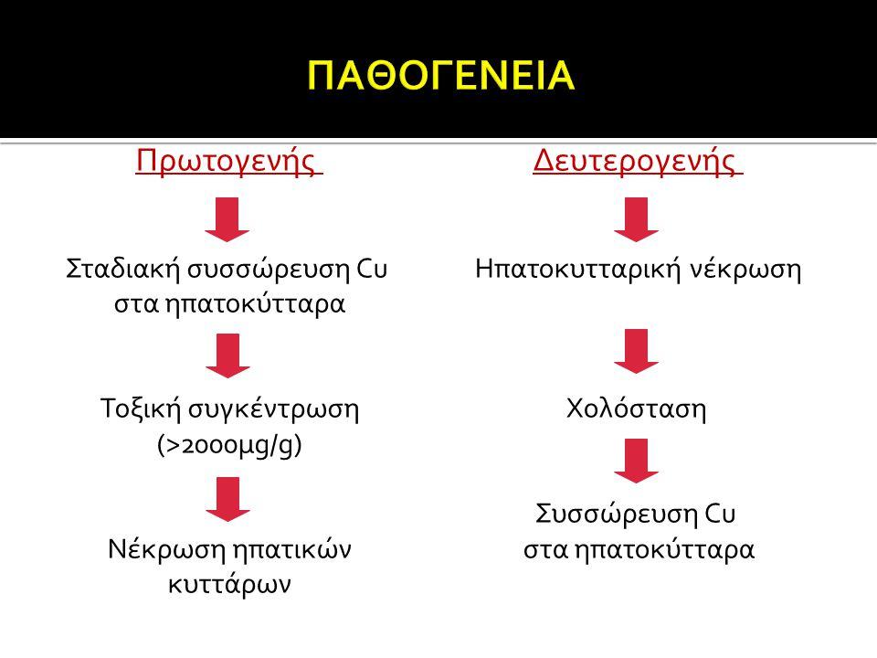 Πρωτογενής Σταδιακή συσσώρευση Cu στα ηπατοκύτταρα Τοξική συγκέντρωση (>2000μg/g) Νέκρωση ηπατικών κυττάρων Δευτερογενής Ηπατοκυτταρική νέκρωση Χολόστ